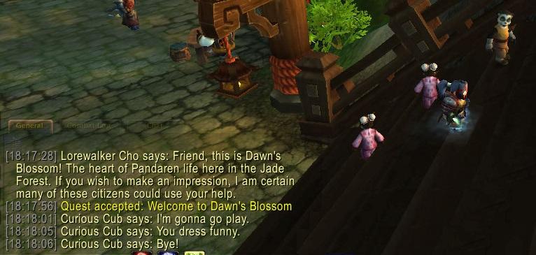 I Dress Funny, Says The Talking Panda Cub